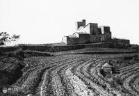 Comença un projecte de recuperació de la memòria de la vinya i el vi al Bages
